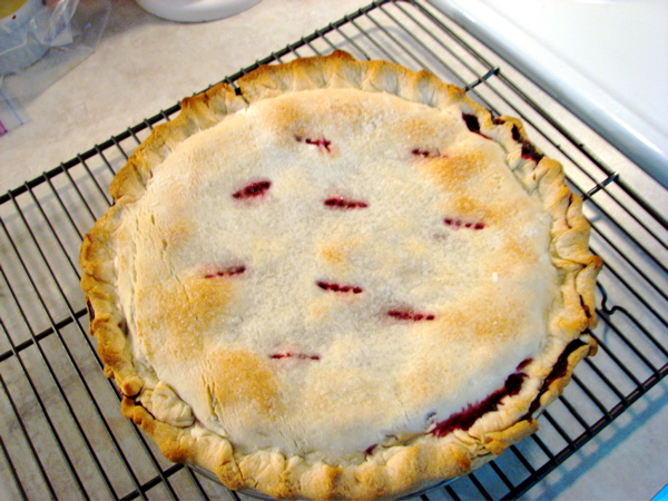 blackberry-pie.jpg