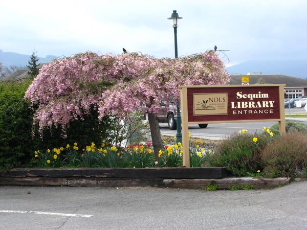 library-entrance.jpg